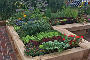 Raised flower beds help make a garden accessible